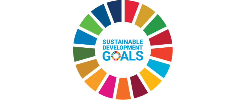 UN Sustainable Development Goals grid