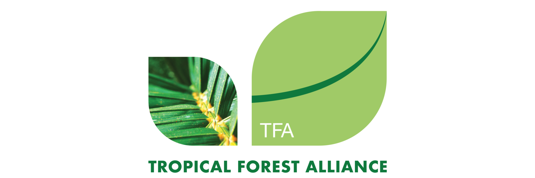 Tropical Forest Alliance
