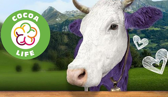 Cocoa life logo with a purple and white cow next to it with penciled in hearts. Background is a range of mountains and a field.