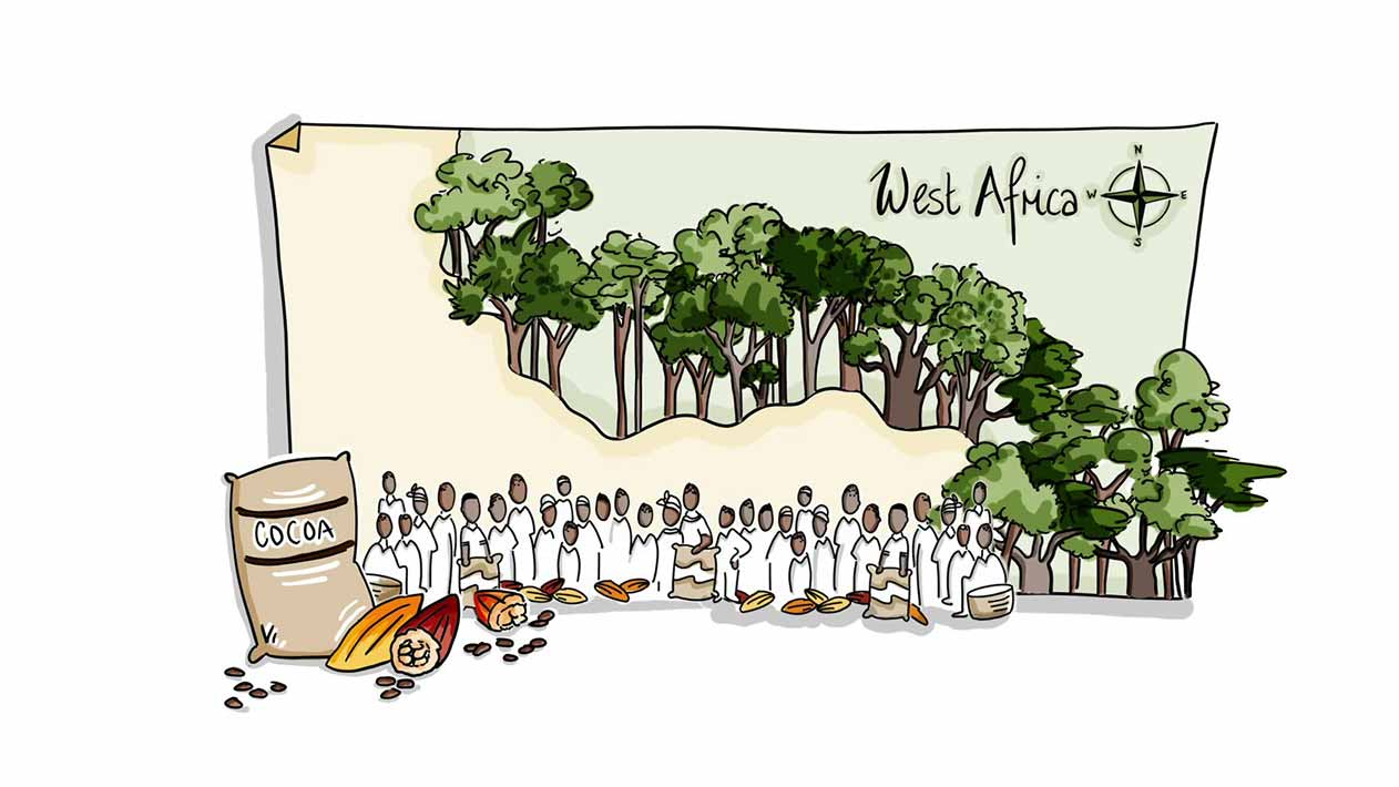 West Africa cocoa farmers illustration