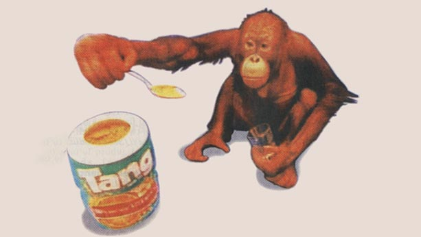 Illustration from 1995 of an orangutan holding a spoon with tang powder in it over a jar of tang.